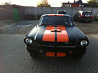Mustang Black Finished Front View