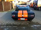 Mustang Black Finished Back View